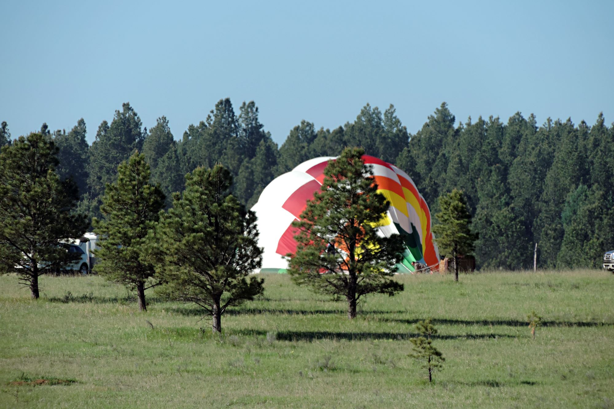 Hot Air Balloon Being Filled Between Trees