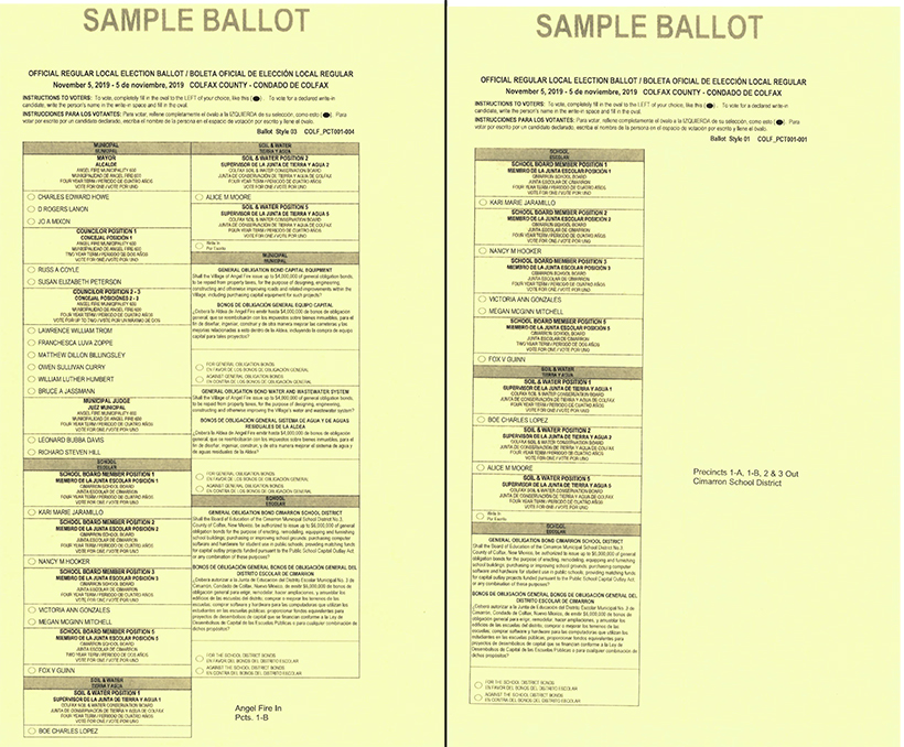 Sample Ballots 2019 photo