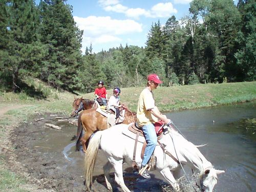 Group Horseback Riding Walking into Water